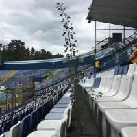 Video | Nace una planta en el estadio Nacional